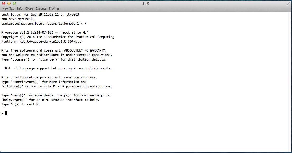 R_linux_term.png